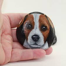 haircut ideas for long hair jack russell dogs this smooth small pebble pet features a little jack russell