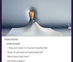No Meme Tumblr - just some bee movie tumblr album on imgur