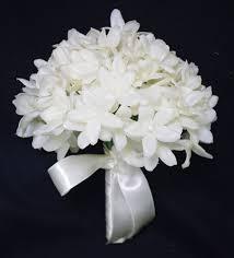 Stephanotis Flower Top 15 Most Expensive Flowers Of The World U2013 Blossom