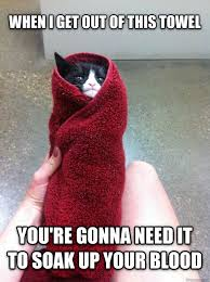 Pissed Meme - pissed off towel cat meme guy
