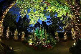 christmas light up performances at the botanic gardens plus new