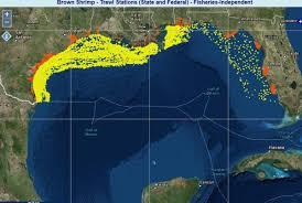 Mexico Maps Discover The Gulf Of Mexico Through Maps National Centers For
