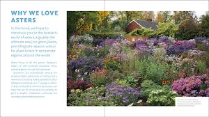 the plant lover u0027s guide to asters the plant lover u0027s guides mr