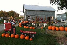 Local Pumpkin Farms In Nj by Pastured Chicken Meat U0026 Naturally Raised Beef In Hudson Valley Ny