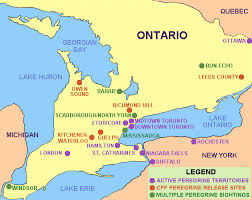 map of southeast canada canadian peregrine foundation southern ontario nest