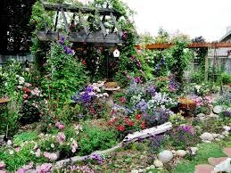 fascinating cottage garden flowers perennials wild garden ideas