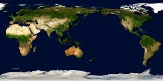 Map Of The Earth The Earth Has Lost Half Its Trees To Human Logging