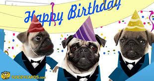 Happy Birthday Pug Meme - singing pugs birthday ecard view the popular singing pugs birthday