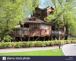 tree house alnwick castle gardens northumberland uk europe