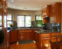 Dark Kitchen Cabinets Ideas by Mid Sized Contemporary U Shaped Kitchen Idea In St Louis With