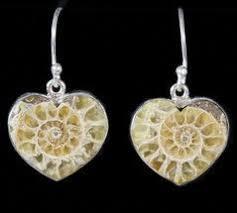 earrings for sale ammonite earrings for sale fossilera