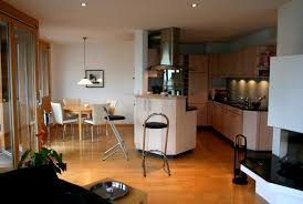 great apartment interior with modest design kitchen and dining