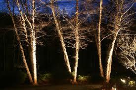 Low Voltage Landscape Lighting Design Preferred Properties Landscaping Masonry Lighting