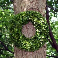 artificial boxwood wreath decorating create your best design for accessories christmas