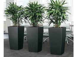 large rectangular planter box u2013 eatatjacknjills com