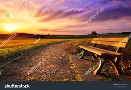 Field Bench Colorful Sunset Scenery Rural Landscape Bench Stock Photo