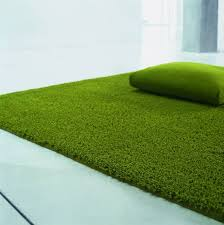 Outdoor Grass Rug Green Grass Rug Home Design Ideas And Pictures