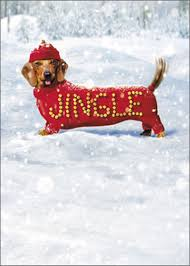 dog christmas cards jingle dog box of 10 humorous dachshund christmas cards by