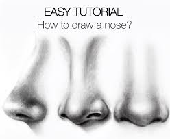 easy tutorial how to draw a nose silvie mahdal the art of