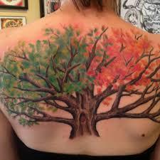oak tree buscar con