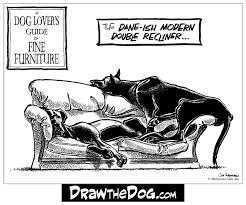 Great Dane Meme - draw the dog great dane rescue of southeast texas save a dane