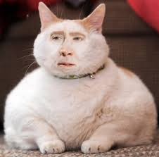 Nicolas Cage Memes - unwilling meme nicolas cage says he s not in the social media realm