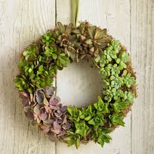 succulent wreath how to make succulent wreaths succulent care tips for growing