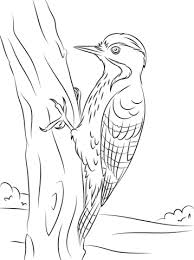 cute coloring sheets birds coloring pages kids