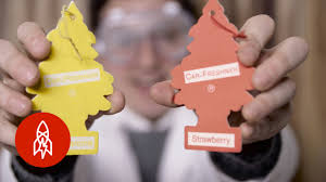 the story of the little tree car air fresheners so fresh and so