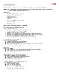 Skills In Resume Example by Domino Administrator Cover Letter