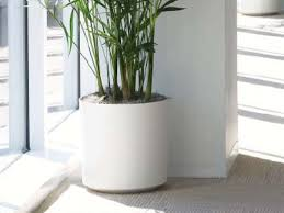Indoor Planter Pots by Eco Friendly Ceramic Cylinder Planter From Indoor Flower Pots 12