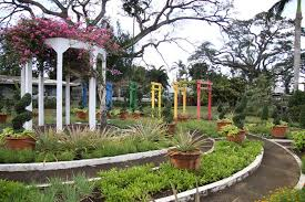 Up Los Banos Botanical Garden Reimagining Landscaping Combining Form And Function Ovcre