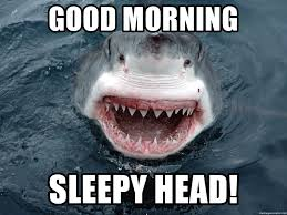 Good Head Meme - good morning head deepthroaters