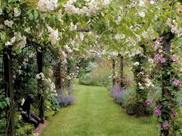 discover the charm of the cottage garden cottage gardens also