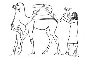 ancient egypt coloring page camel in ancient egypt coloring page free printable coloring pages
