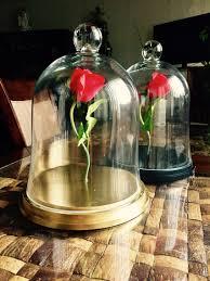 enchanted roses 60 enchanted roses pinterest