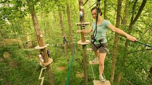 Building A Zip Line In Your Backyard by Raleigh Nc