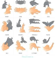 25 unique hand shadow puppets ideas on pinterest hand shadows