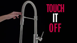 Pro Kitchen Faucet Trinsic Pro Kitchen Faucet Collection Youtube