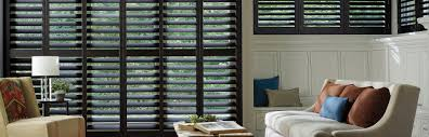 timber shutter blinds acts blinds albany