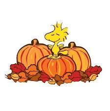 peanuts thanksgiving clip happy thanksgiving