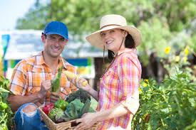 farm to table concept the farm to table concept alive and well in the blue ridge mountain