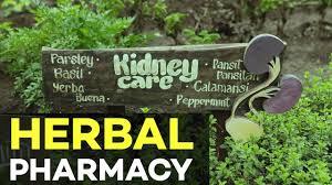 organic farming nurture pharmacy organic farm agriculture