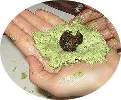 comment cuisiner des escargots cuisine escargot trendy cuisine escargot with cuisine escargot