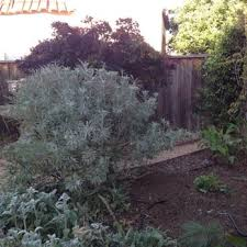 Houston Urban Gardeners - my urban gardener gardeners el cerrito ca phone number yelp