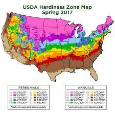 Growing Zone Map Amazon Com Cottage Hill 1 Piece Nandina U0027gulf Stream U0027 Evergreen