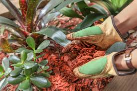 benefits of wood mulch u2013 are wood chips good mulch for gardens