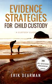 child custody tips and common pitfalls to avoid evidence