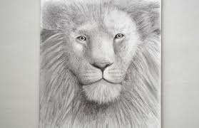 how to draw a lion u0027s head youtube
