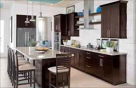 Natural Wood Kitchen Cabinets Kitchen Kitchen Ideas With Dark Cabinets Natural Wood Kitchen